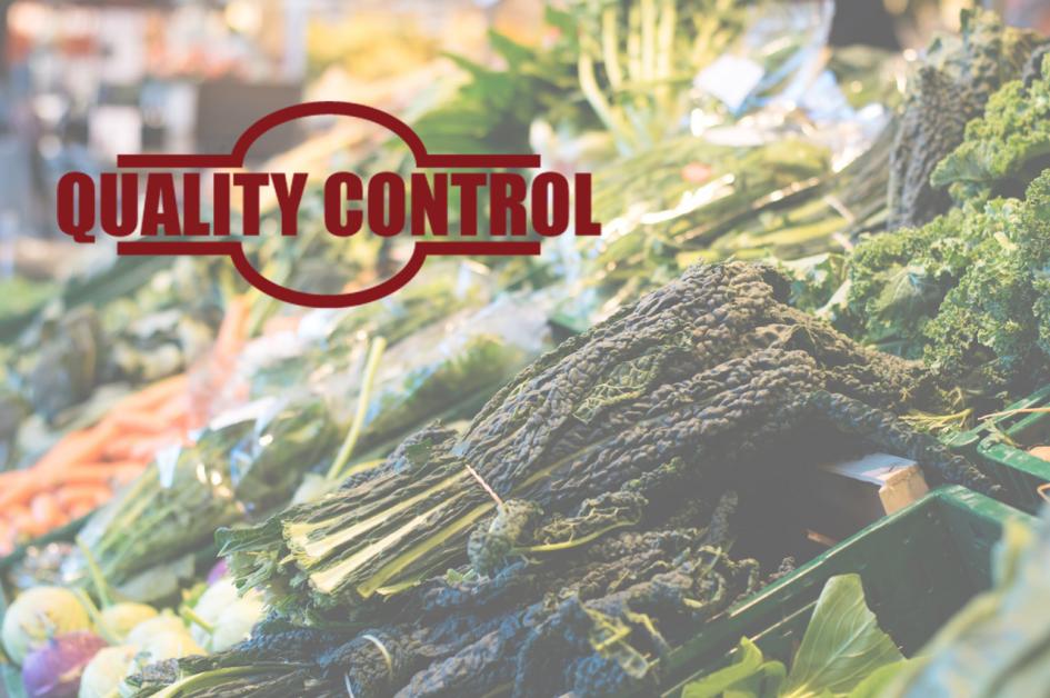 Wareneinganskontrolle in der Gastronomie - Ablauf inkl. Vorlage